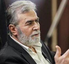 النخالة: حصار غزة جريمة يجب أن تنتهي بلا مقابل